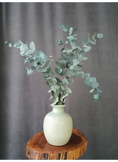 Kuru Çiçek Deposu Kuru Çiçek Şoklanmış Okaliptus Demeti Karışık Renk (50 Cm) Mavi